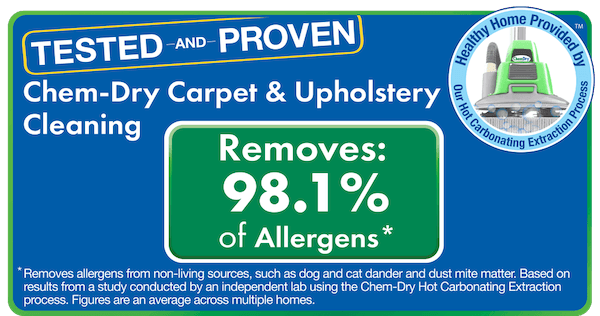results for carpet cleaning orlando fl